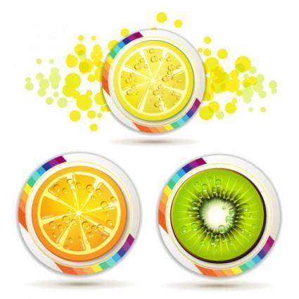 free vector Delicious fruit slices 04 vector