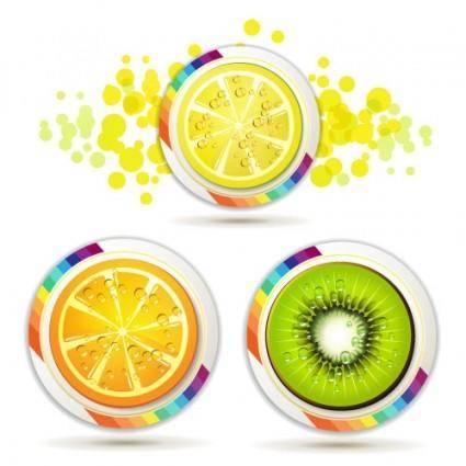 free vector Delicious fruit slices 04 vector