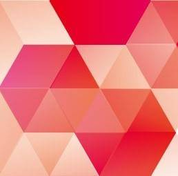 free vector Pomegranate cube vector