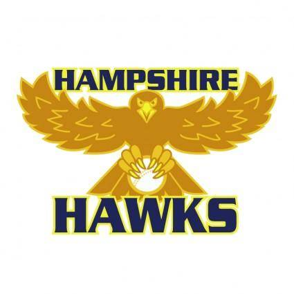 free vector Hampshire hawks