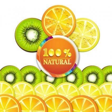 free vector Delicious fruit slices 03 vector