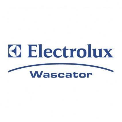 Electrolux wascator