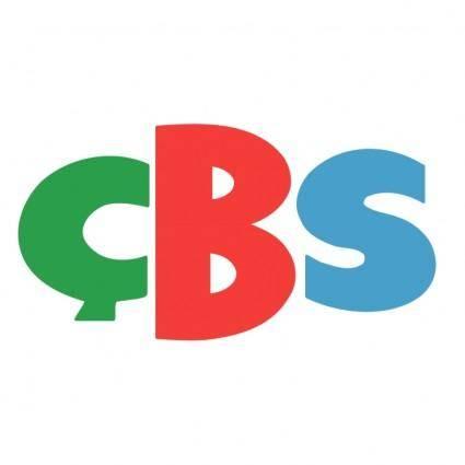 Cbs boya kimya