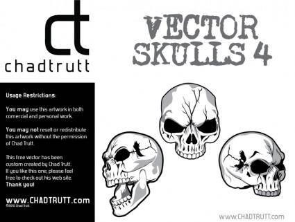 free vector Human Skulls 4