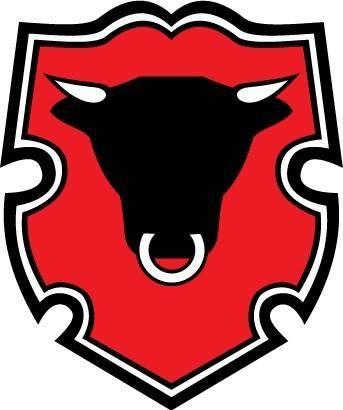 free vector Rigas Miesnieks logo