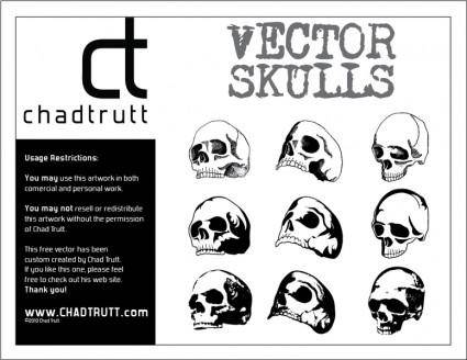 free vector Human Skulls 3