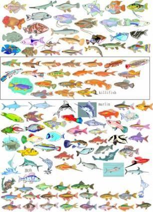 free vector Variety of fish vector
