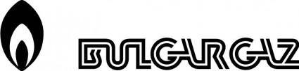 free vector Bilgargaz logo
