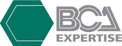 free vector BCA expertise logo