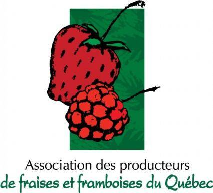 free vector APFFQ logo
