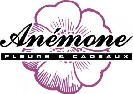 free vector Anemone fleurs et cadeaux