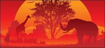 free vector Jungle elephant  Giraffe  Goat