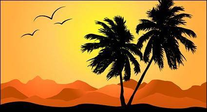 free vector Palm tree in sunset
