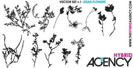 free vector Flowers vector