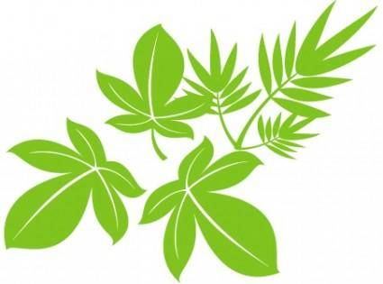 free vector Vector Tree Leaf 02