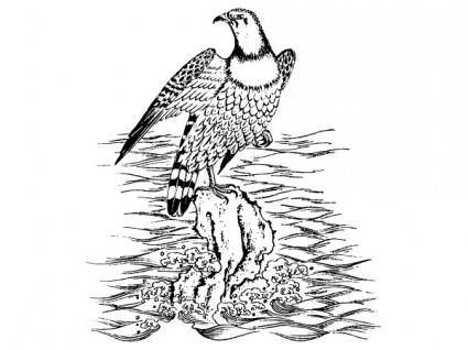Six chinese classical vector eagle