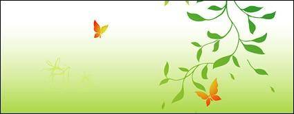 Pictures of green branches and Butterfly