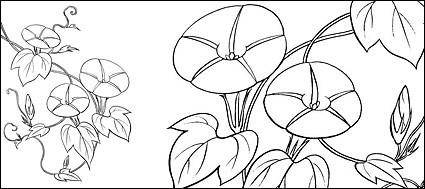 free vector Line drawing of flowers -9