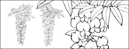 free vector Line drawing of flowers -12