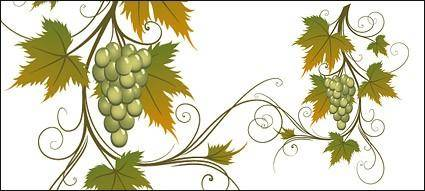 Vector material vines