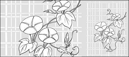 Vector line drawing of flowers-26(Morning glory, lattice background) 93538