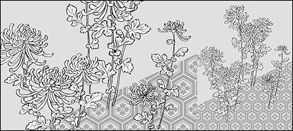 Vector line drawing of flowers-39(Chrysanthemum, background)