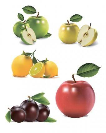free vector Ultrarealistic fruit vector
