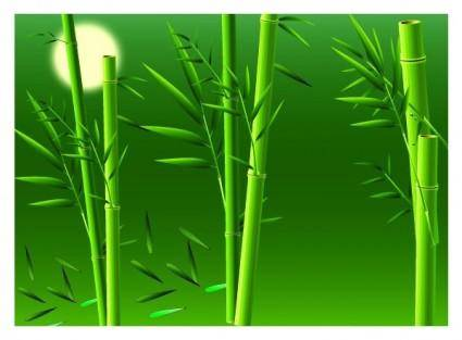 free vector Realistic bamboo vector