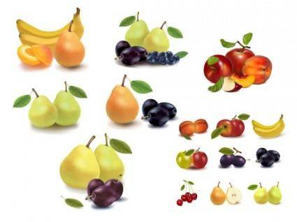 free vector Realistic vector fruits