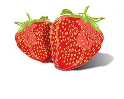 free vector Tasty Strawberries