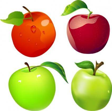 free vector Free Vector Apples