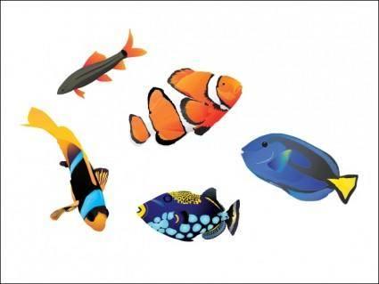 free vector Saltwater Fish