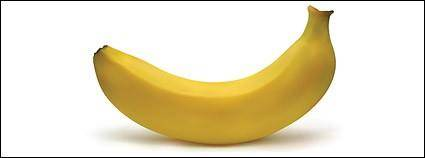 free vector Banana