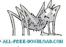 Spider 14