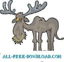 Moose Eating 1