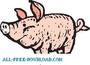 Pig 28