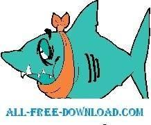 Shark Toothache