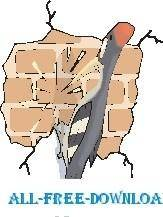 Woodpecker and Brick Wall