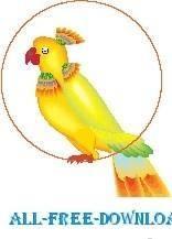 Parrot 20