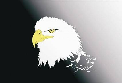 free vector Vector Eagle Head