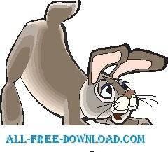 Rabbit 34