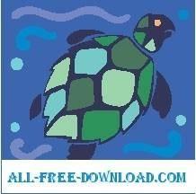 Turtle 24