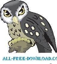 free vector Owl 19