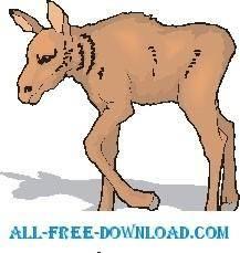 free vector Moose Baby