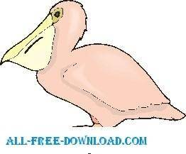 free vector Pelican 6