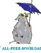 Rat Under Umbrella