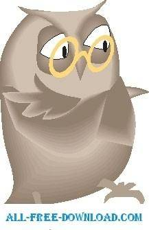 Owl 16