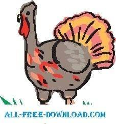 free vector Turkey 09