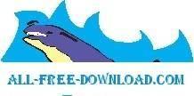 Whale 21