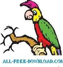 Parrot 24